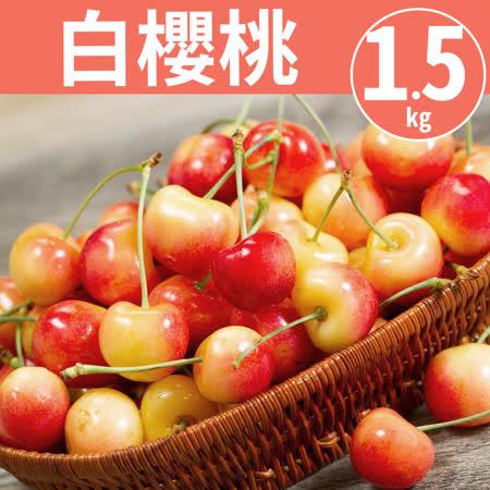 9.5Row 華盛頓白櫻桃1.5kg
