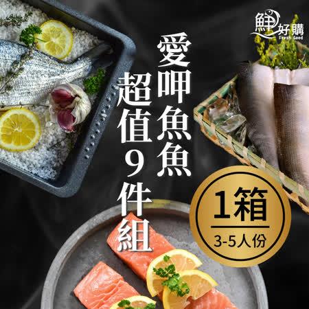 鮮好購 愛呷魚魚超值9件組
