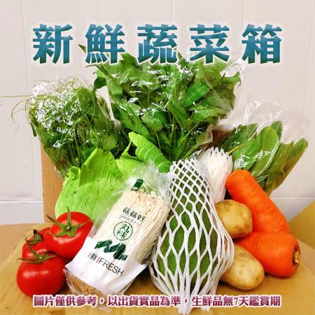 青果社 新鮮蔬菜箱隨機10樣