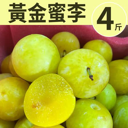 台灣梨山 黃金蜜李4台斤