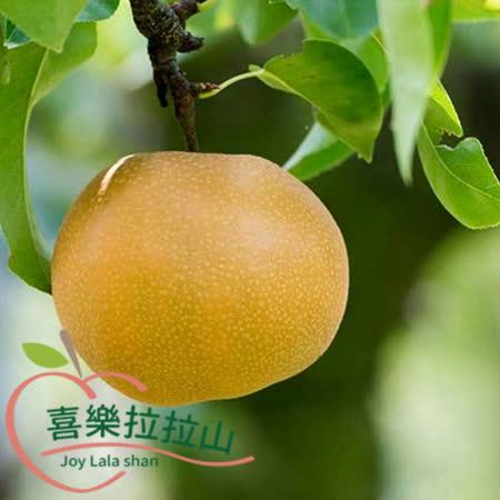 【拉拉山】 蜂蜜梨8粒(3斤/盒)