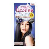 莉婕泡沫染髮劑-自然黑色