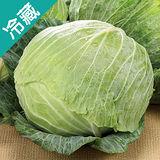 台灣高麗菜1粒 (800g ± 5%/ 粒 )